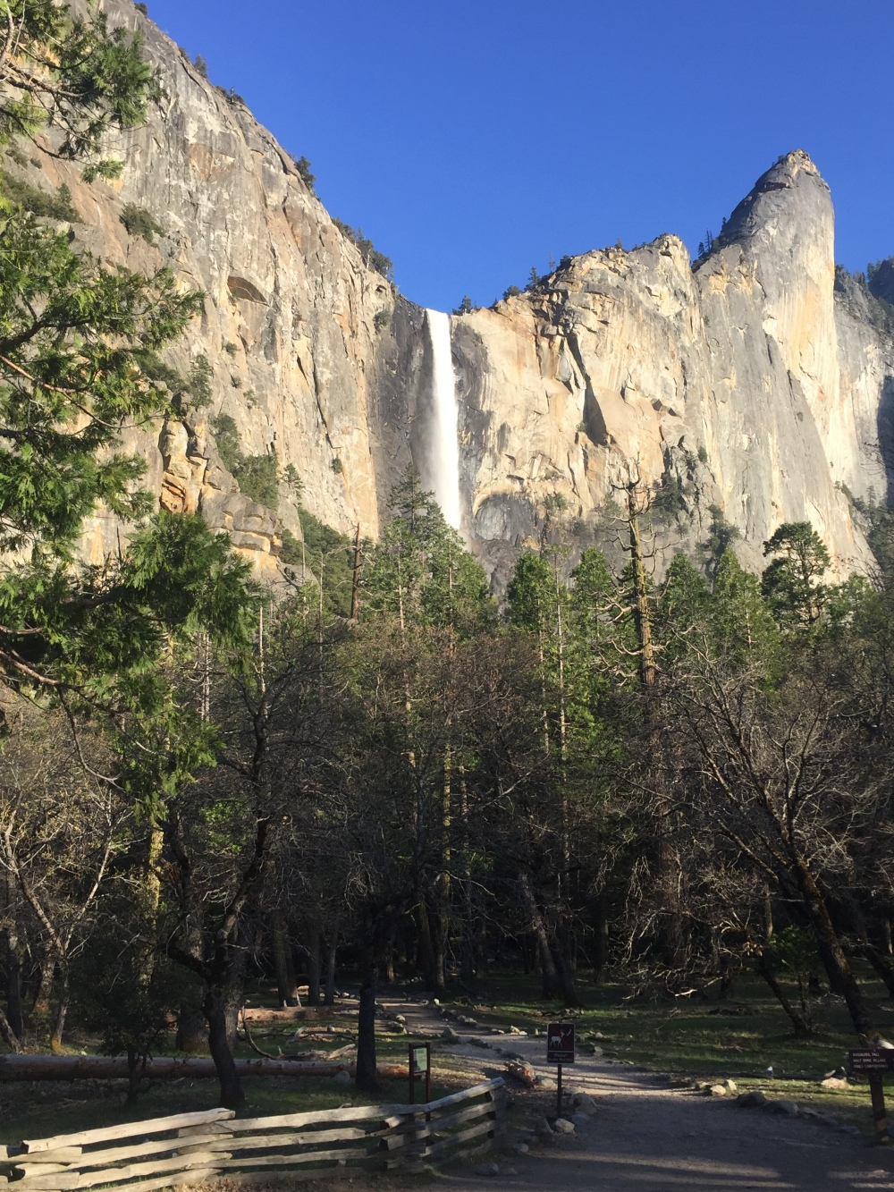 Upper Yosemite Falls Swinging Bridge